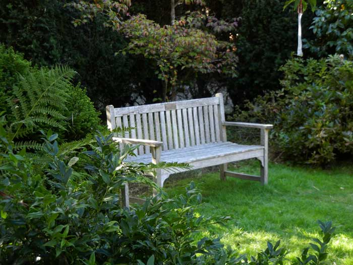 A pleasant place to sit and contemplate nature's beauty as magnified by the gardener's touch