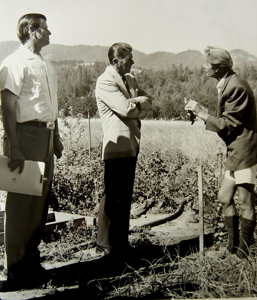 Governor Ronald Reagan visits with Alan Chadwick in the garden at Covelo