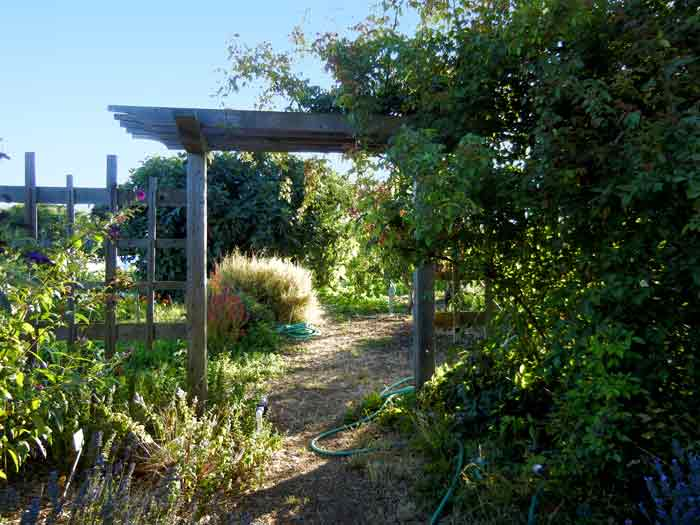 An oriental-style arbor gateway at the UCSC Agroecology farm
