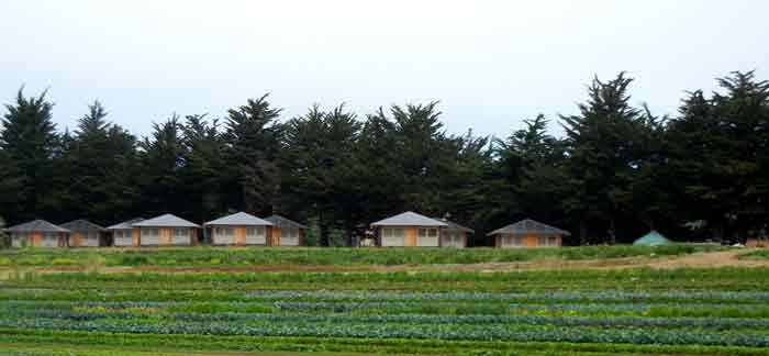 Apprentice housing cluster at the farm of the UCSC Agroecology Program