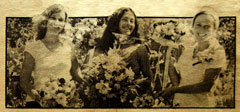 The Flower Ladies of Santa Cruz, California